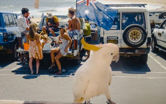 Backpackingguiden för Australien – allt du behöver veta!