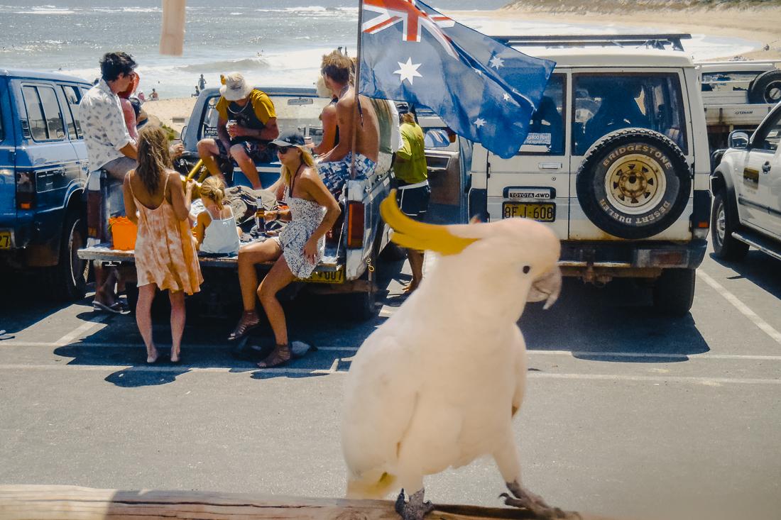 Backpackingguiden för Australien - allt du behöver veta!
