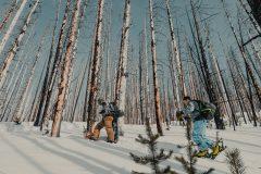 Skidåkning i brandskadad skog – Vermilion Peak