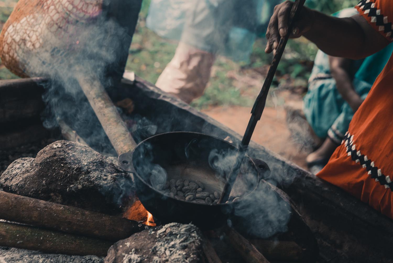 Ät choklad i Panamas regnskog - vägen från blomma till ren choklad