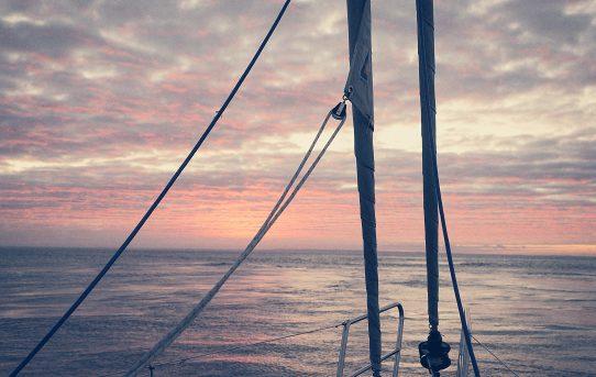 Biscayabukten: 2,5 dygns segling – massor av valar och delfiner