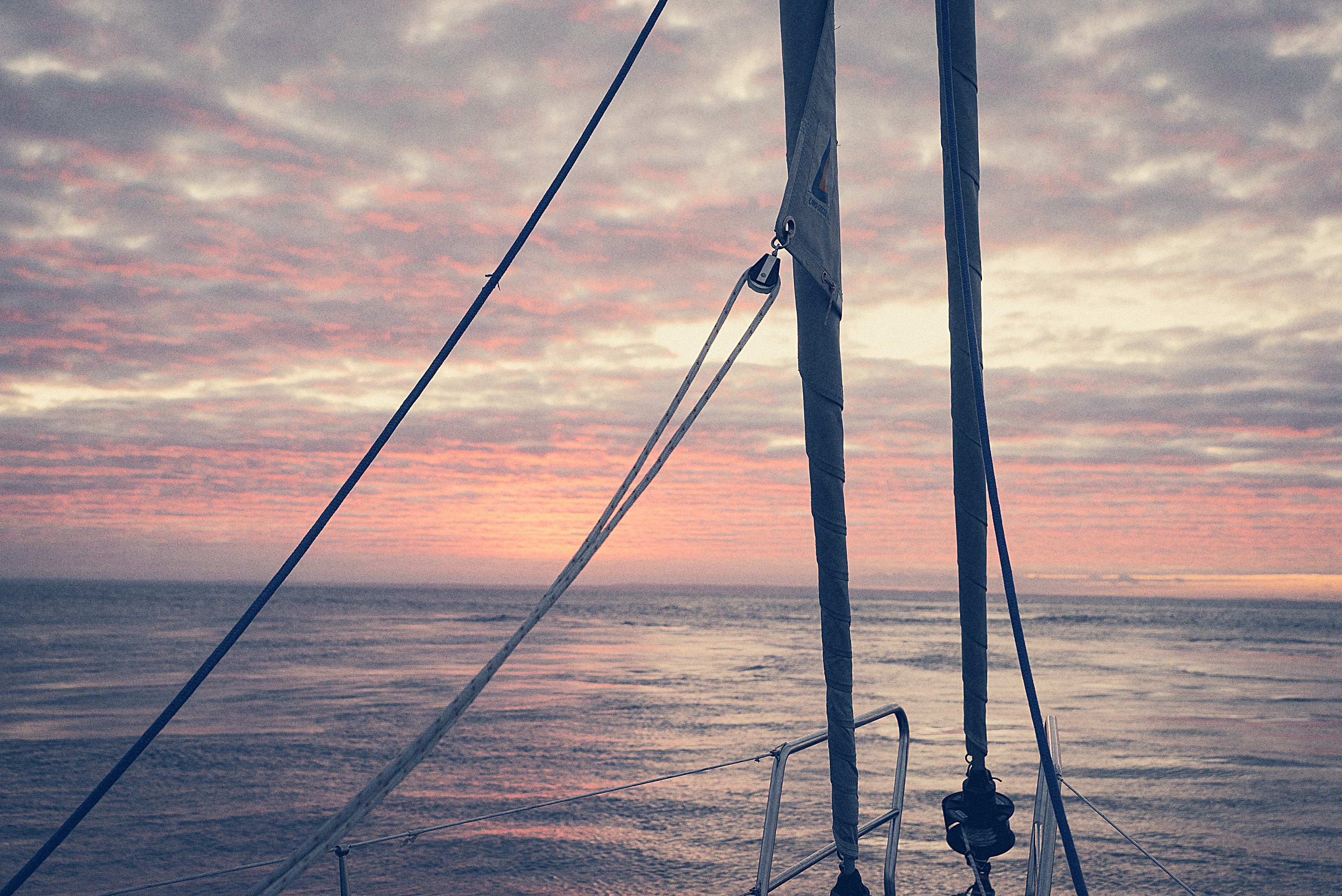 Biscayabukten: 2,5 dygns segling - massor av valar och delfiner