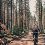 Tio Toppar Tavelsjödygnet – 62 km mountainbike och vandring i vackra Tavelsjö